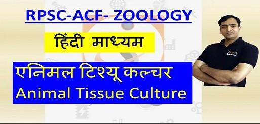 Animal Tissue Culture