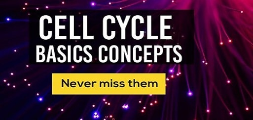 CELL CYCLE Basic Concepts
