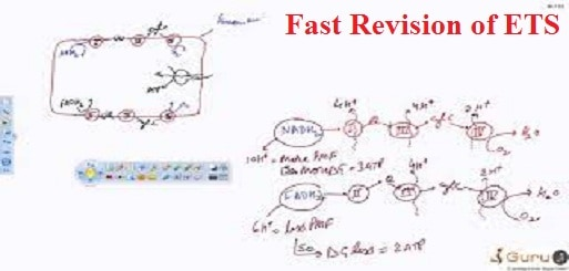 Fast Revision of ETS